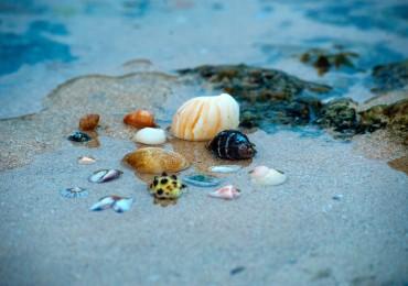 villaggi ascea marina, ascea marina villaggi, hotel ascea marina, ascea marina hotel, villaggi, ascea, marina, hotel, dirottadanoi